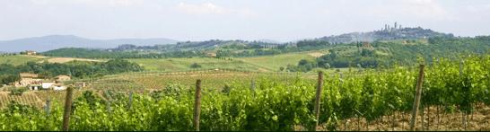 San Gimignano Chianti